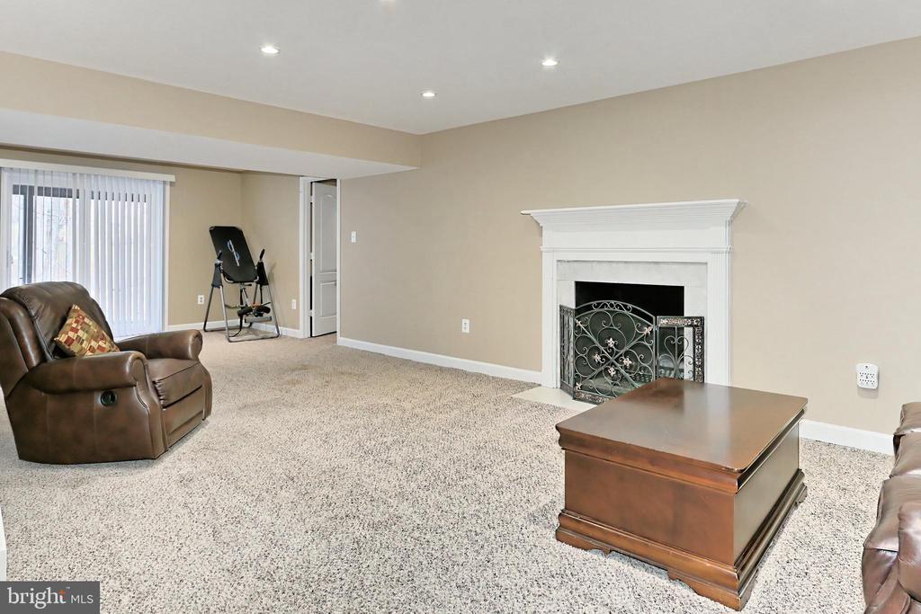 Walk-out Lower Level Rec Room - 6302 KNOLLS POND LN, FAIRFAX STATION