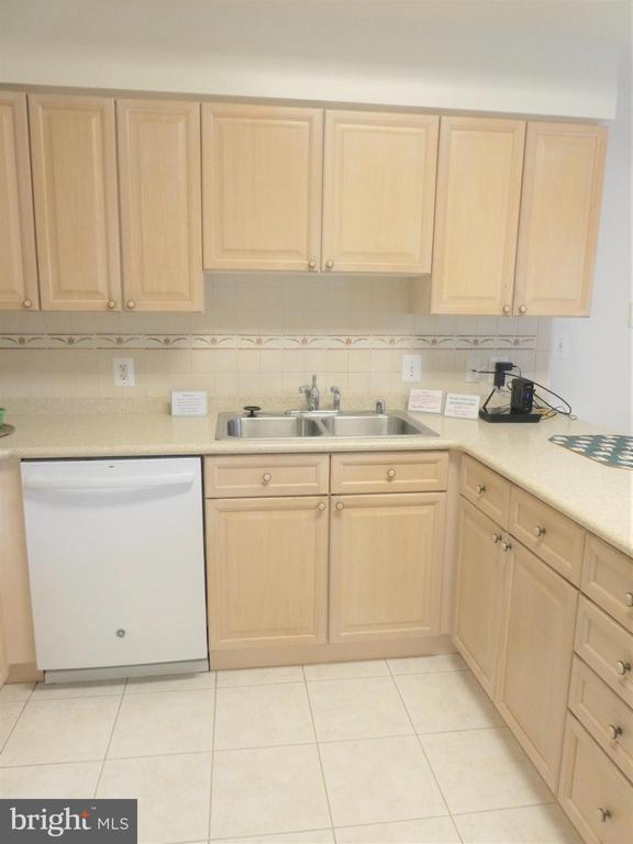 Dishwasher, double sink and ample cabinets/counter - 19365 CYPRESS RIDGE TER #416, LEESBURG