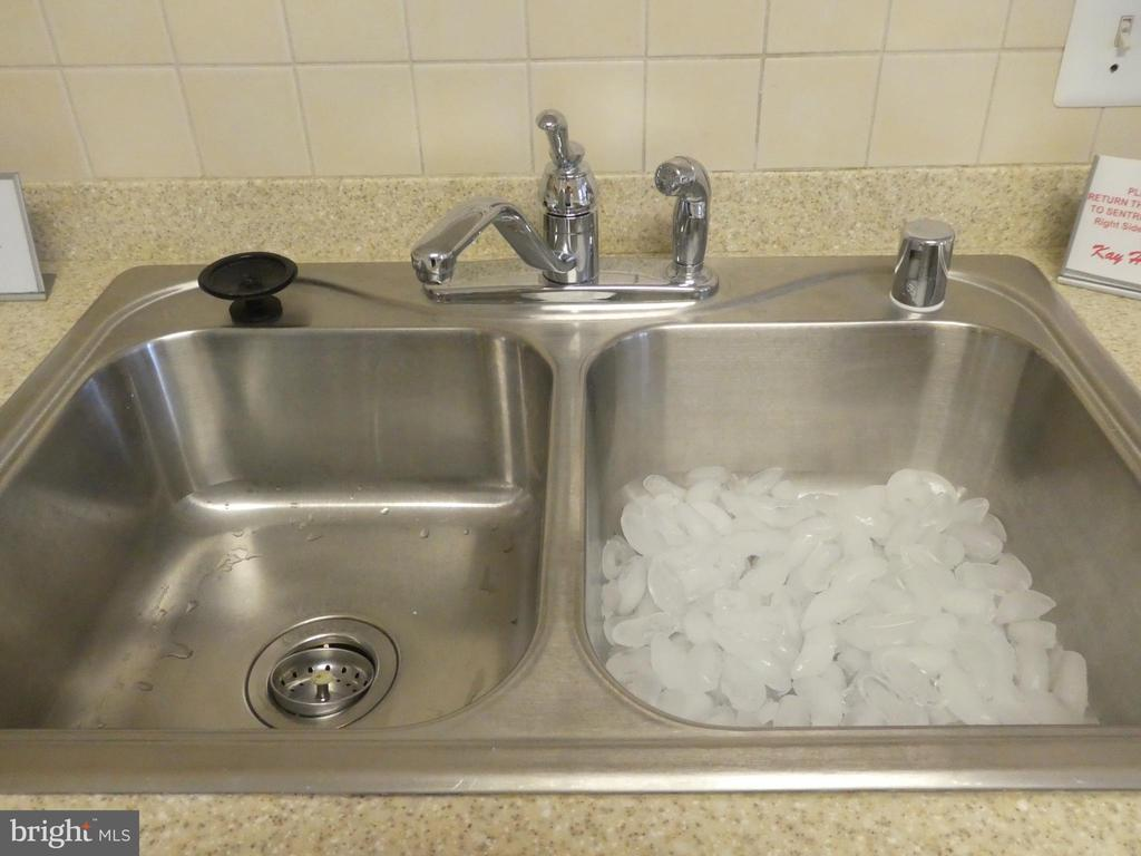 Kitchen double sink - 19365 CYPRESS RIDGE TER #416, LEESBURG
