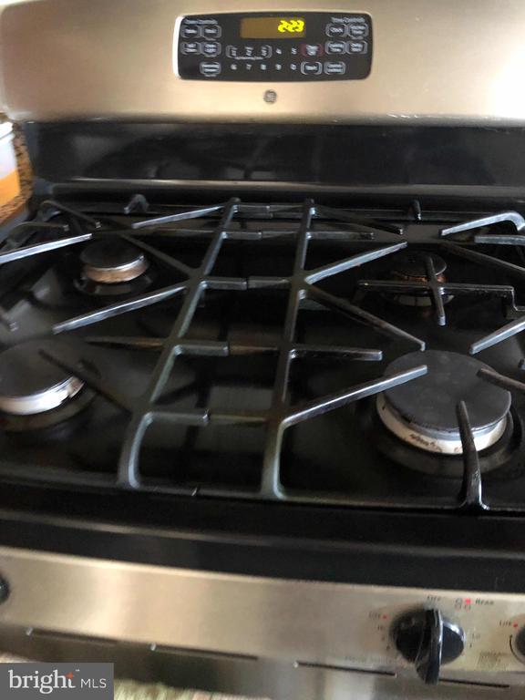 Gas stove - 23600 BENNETT CHASE DR, CLARKSBURG