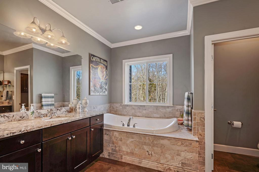 Primary Bathroom - 22522 WILDERNESS ACRES CIR, LEESBURG