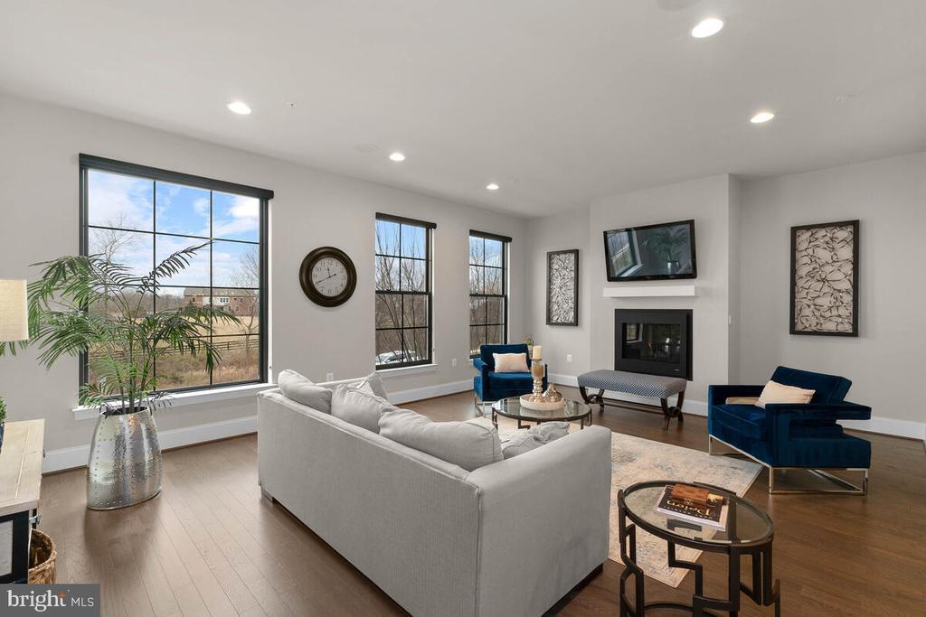 Living Room, Level 2 - 20444 NORTHPARK DR, ASHBURN