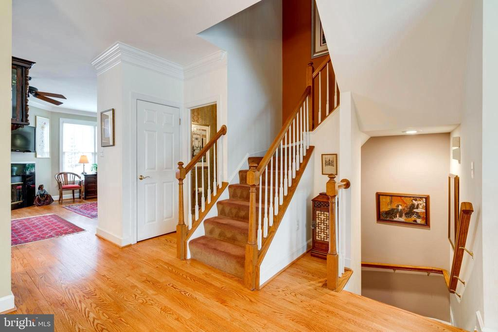 Stairs to Upper & Lower Levels  - Family Room View - 10502 CATESBY ROW, FAIRFAX