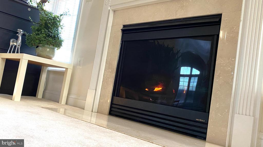 Fire Place - 201 GREENHOW CT SE, LEESBURG