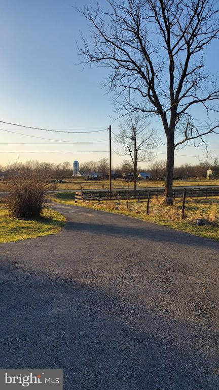 VIEW FROM DRIVEWAY - 1700 KIMBLE RD, BERRYVILLE