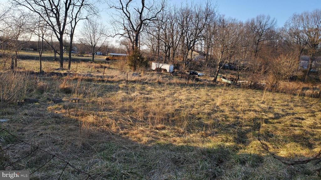 VIEW OF ACREAGE - 1700 KIMBLE RD, BERRYVILLE