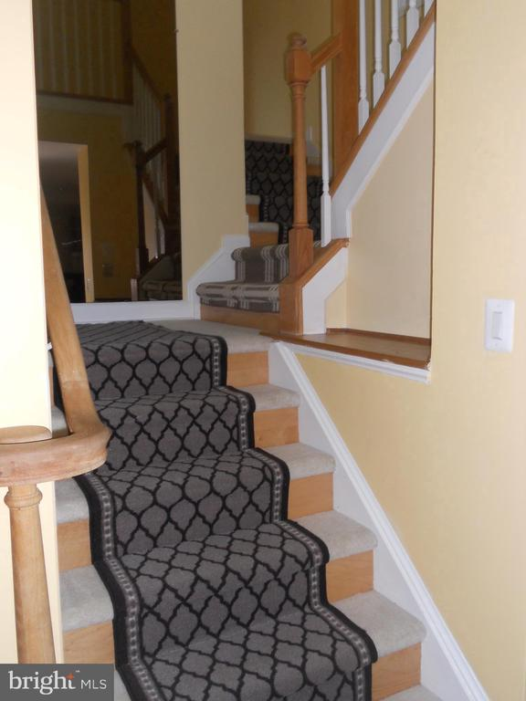 Stairs - 44033 PANDORA CT, ASHBURN