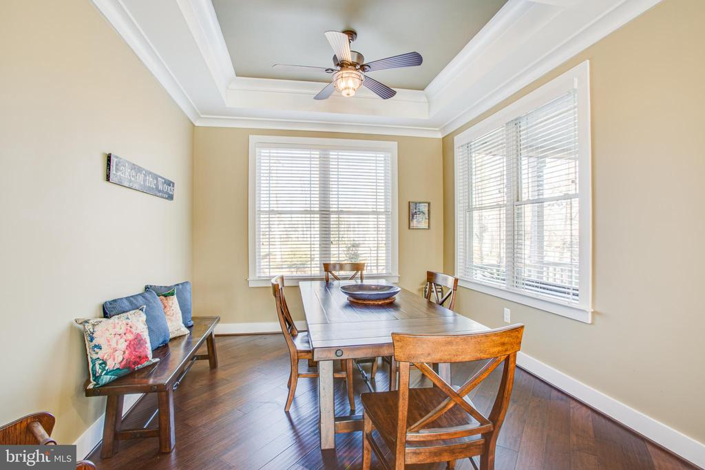 Dining area with tray ceiling - 208 LIMESTONE LN, LOCUST GROVE