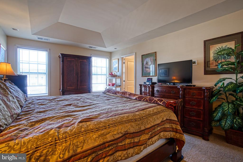 Primary Bedroom has BIG Walk-in Closet - 23399 CARTERS MEADOW TER, ASHBURN