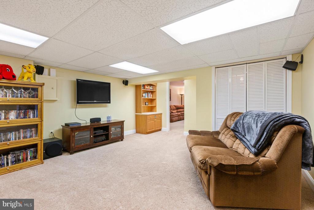 Rec -Room - 5722 WINDSOR GATE LN, FAIRFAX