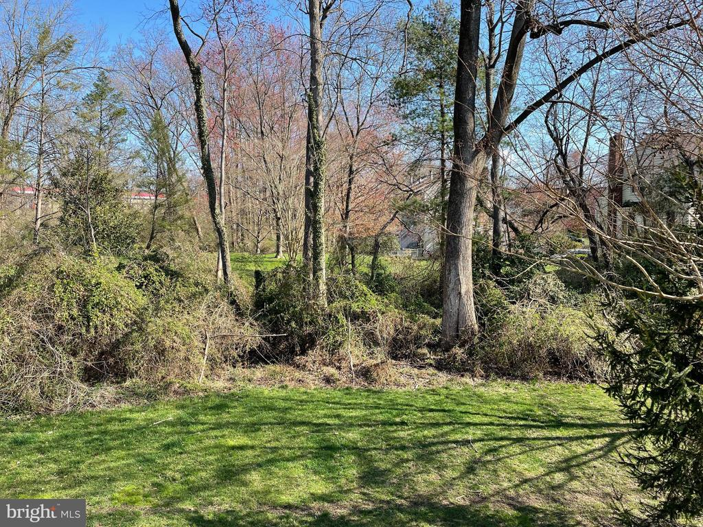 View from back deck - so private! - 10286 GREENSPIRE DR, OAKTON