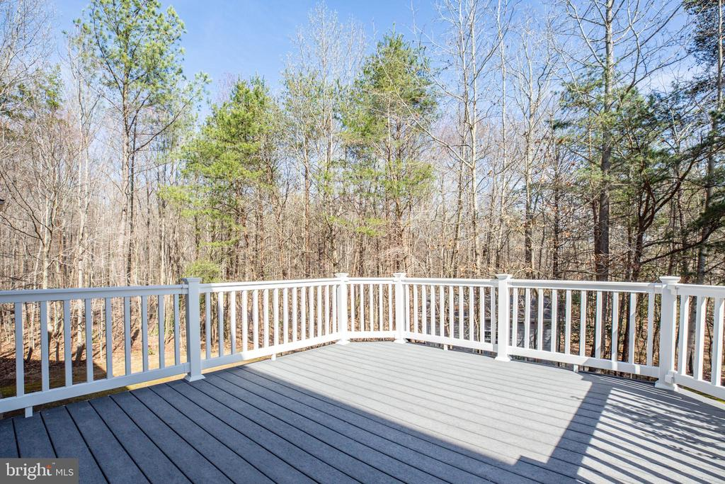 Deck view - 94 BROOKESMILL LN, STAFFORD