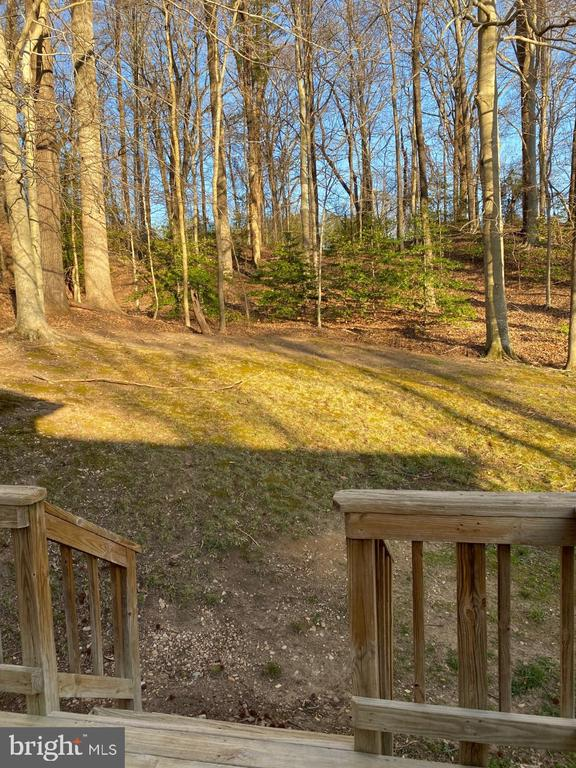 View to Rear Yard From Main Bedroom - 2024 SCHOONER DR, STAFFORD