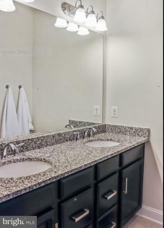 Owners bath has double vanity - 17353 REDSHANK RD, DUMFRIES