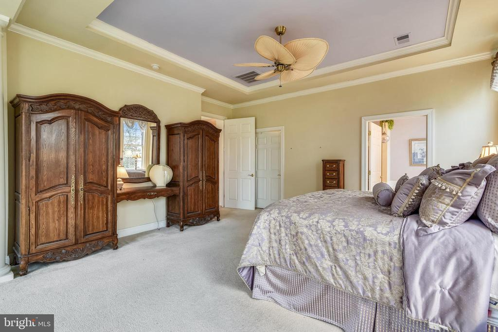 Spacious owner's suite. - 5312 TREVINO DR, HAYMARKET