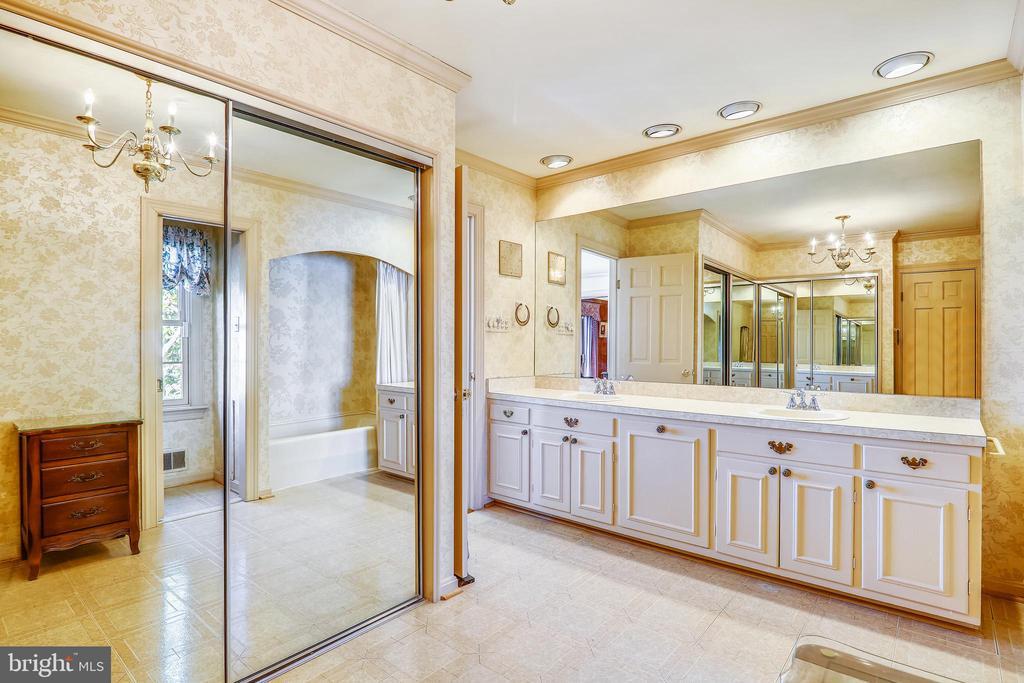Voluminous main level primary bath w/ double sinks - 3903 BELLE RIVE TER, ALEXANDRIA
