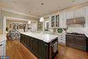 A true Chef's kitchen with elongated marble island - 711 PRINCE ST, ALEXANDRIA