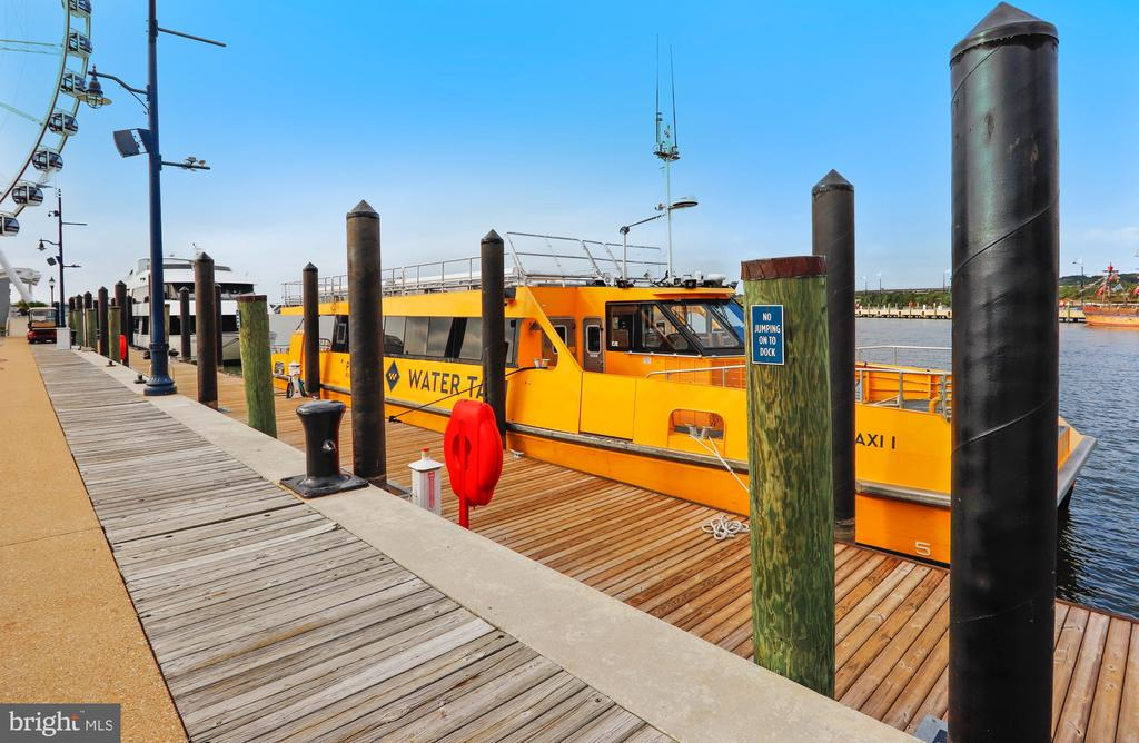 WaterTaxi to Old Town Alex., The Wharf & Georgetow - 157 FLEET ST #413, NATIONAL HARBOR