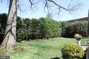 Blissful oasis of mature trees and plantings - 711 PRINCE ST, ALEXANDRIA
