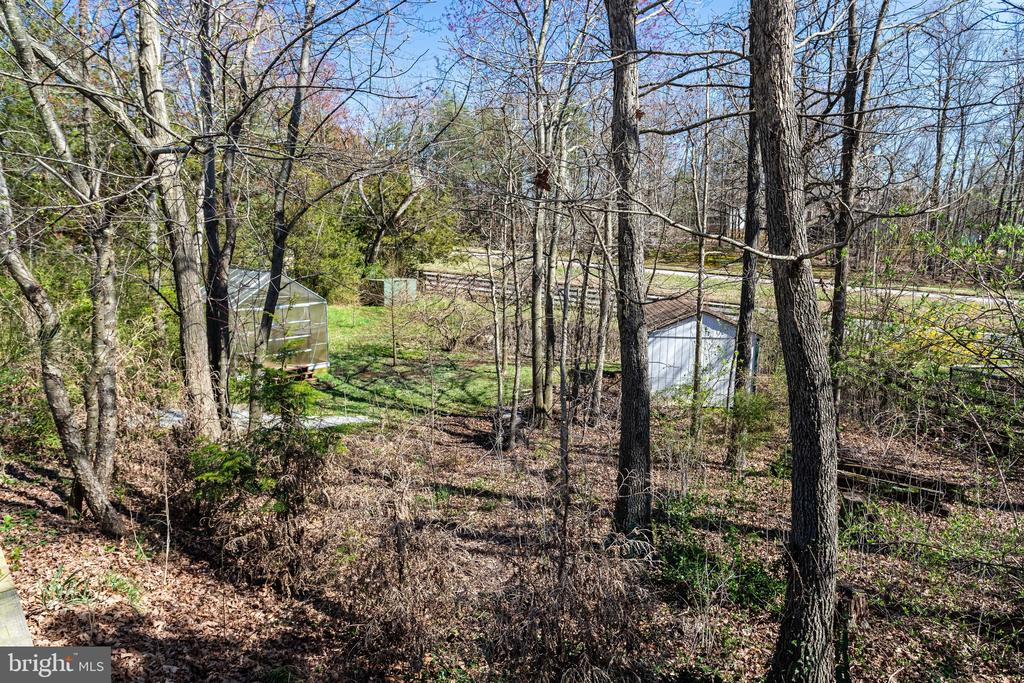 Nearly  1 Acre of Land; Greenhouse - 9107 ROOKINGS CT, SPRINGFIELD