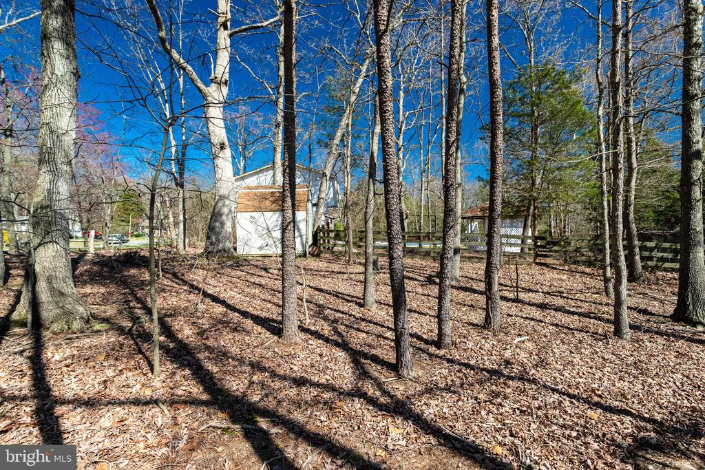 Large Corner Lot; Nearly 1 Acre of Land Overall - 9107 ROOKINGS CT, SPRINGFIELD