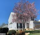 Blooming Cherry Tree. - 6 BEAU RIDGE DR, STAFFORD