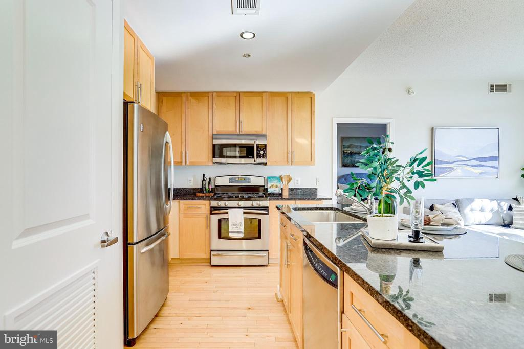 Chef's Granite and Stainless Steel Kitchen - 820 N POLLARD ST #208, ARLINGTON