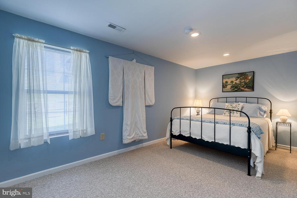 Lower level 5th bedroom - 33 BISMARK DR, STAFFORD