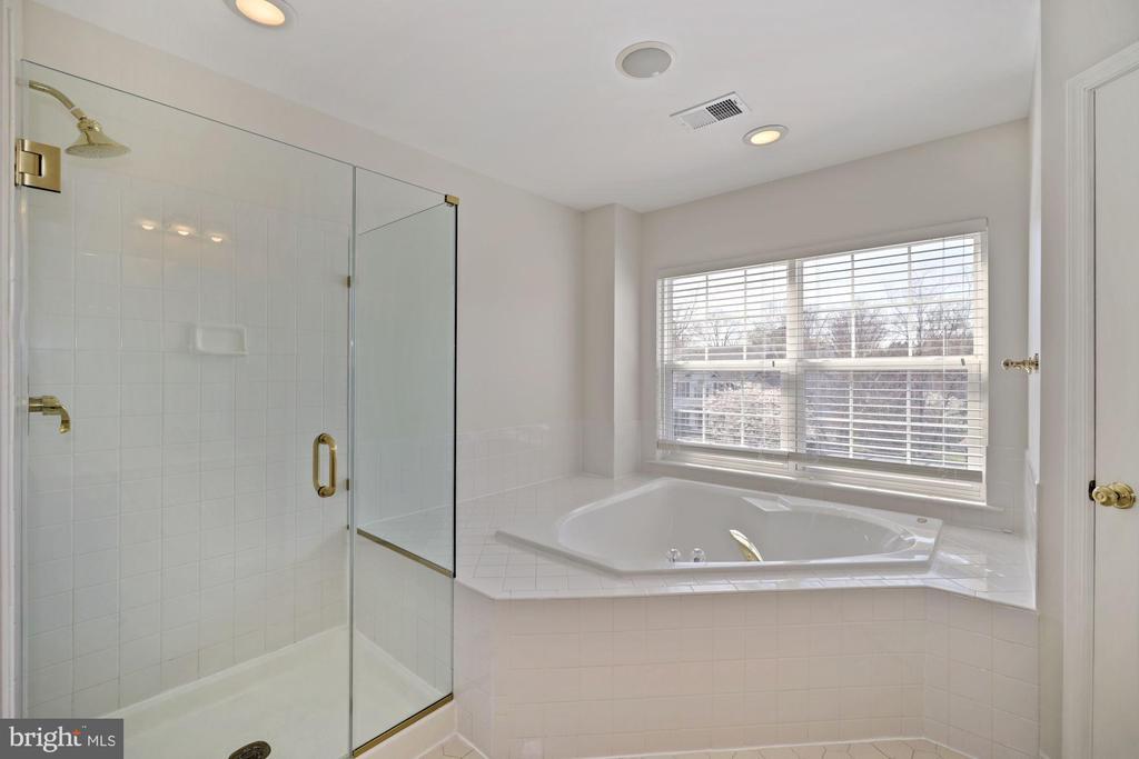 Huge shower stall and large garden soaking tub - 1306 MONROE ST, HERNDON