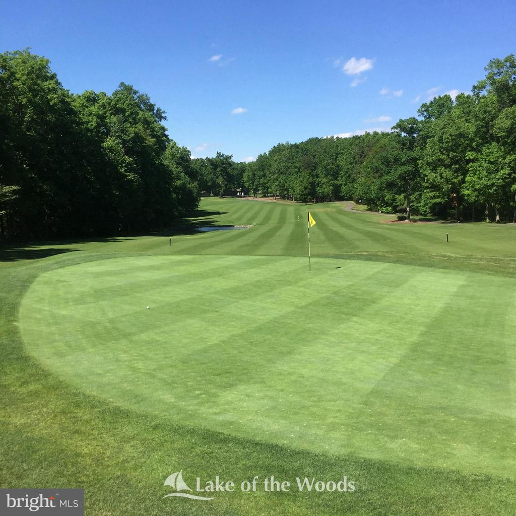 Well maintained golf course - 112 WOODLAWN TRL, LOCUST GROVE