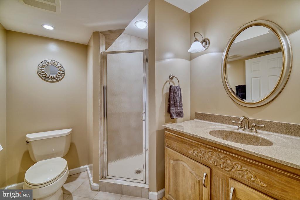 Full Bathroom in the Lower Level - 5523 ASHLEIGH RD, FAIRFAX