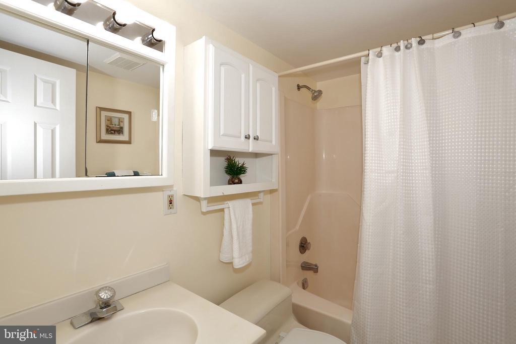 Lower level full bath - 14908 TALKING ROCK CT, NORTH POTOMAC