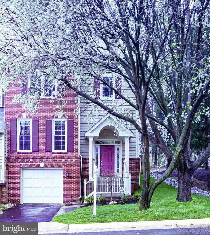 Cherry Tree Blooming - 11811 GREAT OWL CIR, RESTON