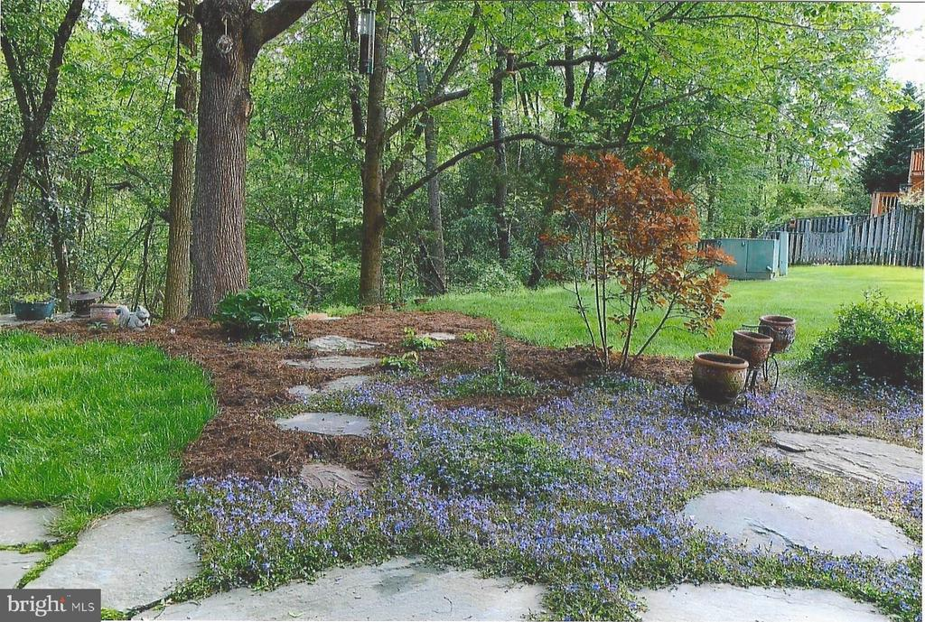 Beautiful flowering landscaping - 5731 MASON BLUFF DR, BURKE