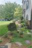 Integrated hardscape and flowering landscape - 5731 MASON BLUFF DR, BURKE