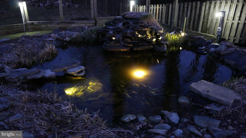 Night view of Koi pond - 8703 SUDBURY PL, ALEXANDRIA