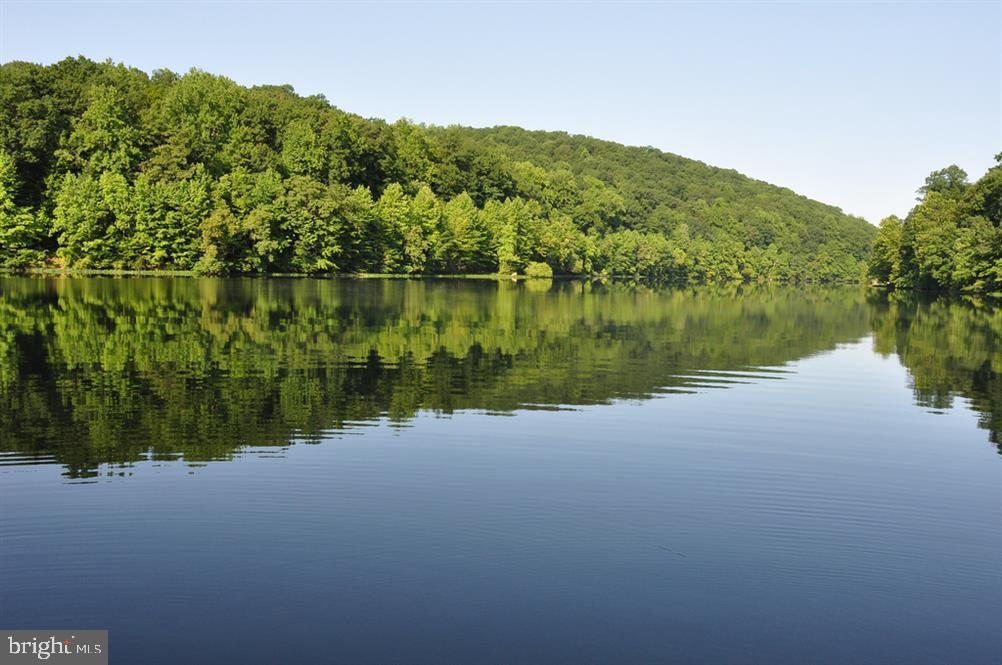 4 Lakes! - 6626 ACCIPITER DR, NEW MARKET