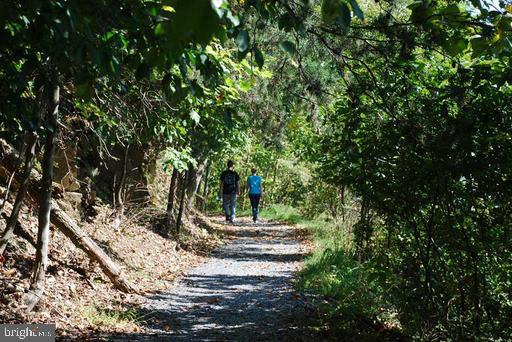 Miles of Hiking Trails! - 6626 ACCIPITER DR, NEW MARKET