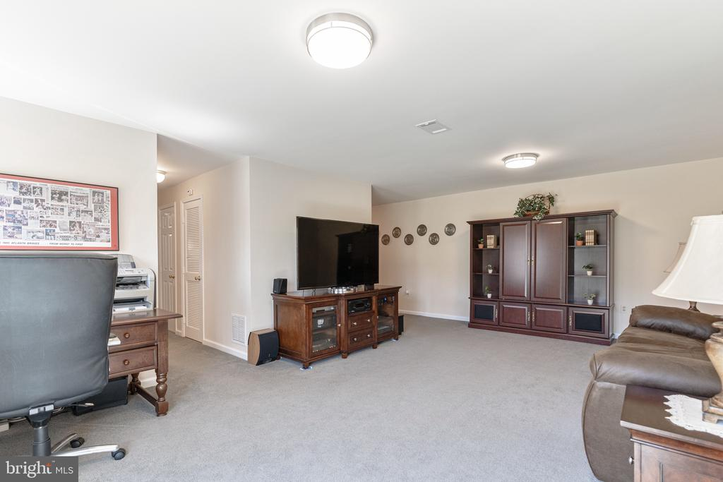 Basement Rec Room - 9729 IRONMASTER DR, BURKE