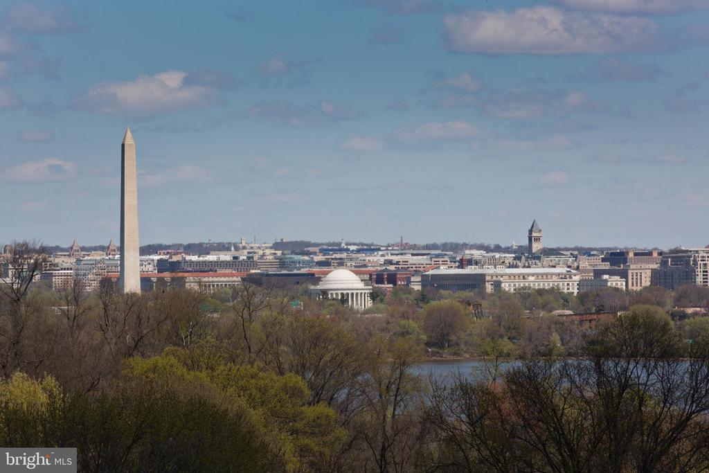 Look at that view! - 1805 CRYSTAL DR #810S, ARLINGTON