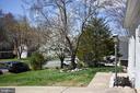 Enjoy Virginia flora and fauna in your front yard - 3014 MEDITERRANEAN DR, STAFFORD