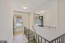 Let's take a look downstairs! - 304 W VERNON CT, STERLING