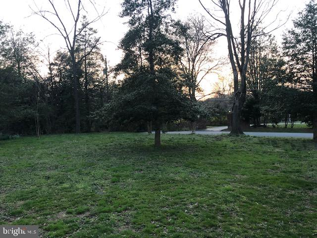 Front yard; large; private and flat - 9365 CAMPBELL RD, VIENNA