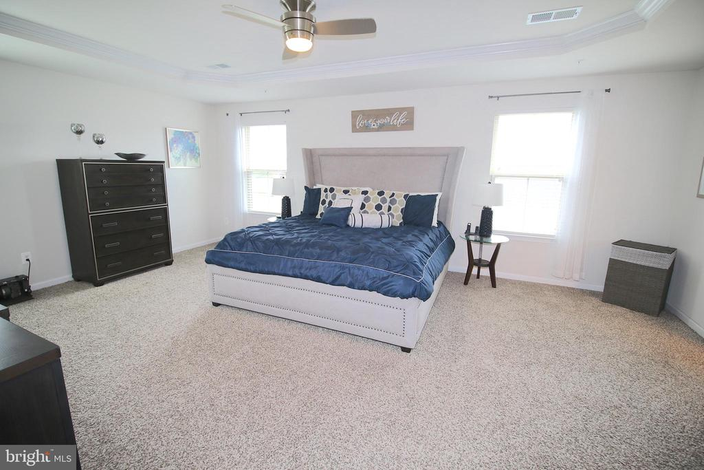 Large Master Bedroom - 2532 SWEET CLOVER CT, DUMFRIES