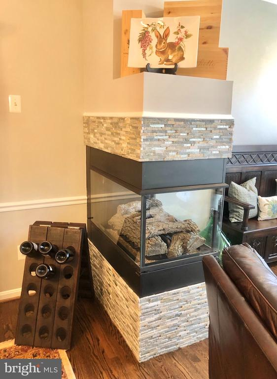Double sided gas fireplace with new stone surround - 4124 TROWBRIDGE ST, FAIRFAX