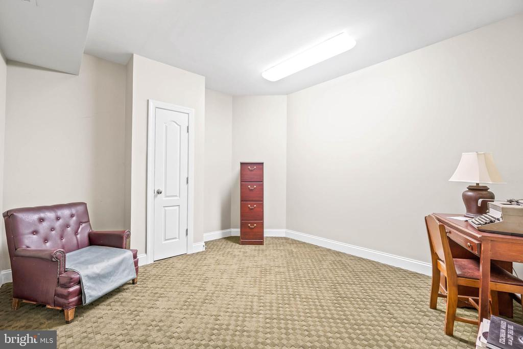 Lower Level Office/Bedroom #7/Storage Room - 11170 GEORGES MILL RD, LOVETTSVILLE