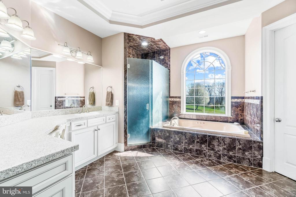 Master Bathroom with Jacuzzi Tub - 11170 GEORGES MILL RD, LOVETTSVILLE