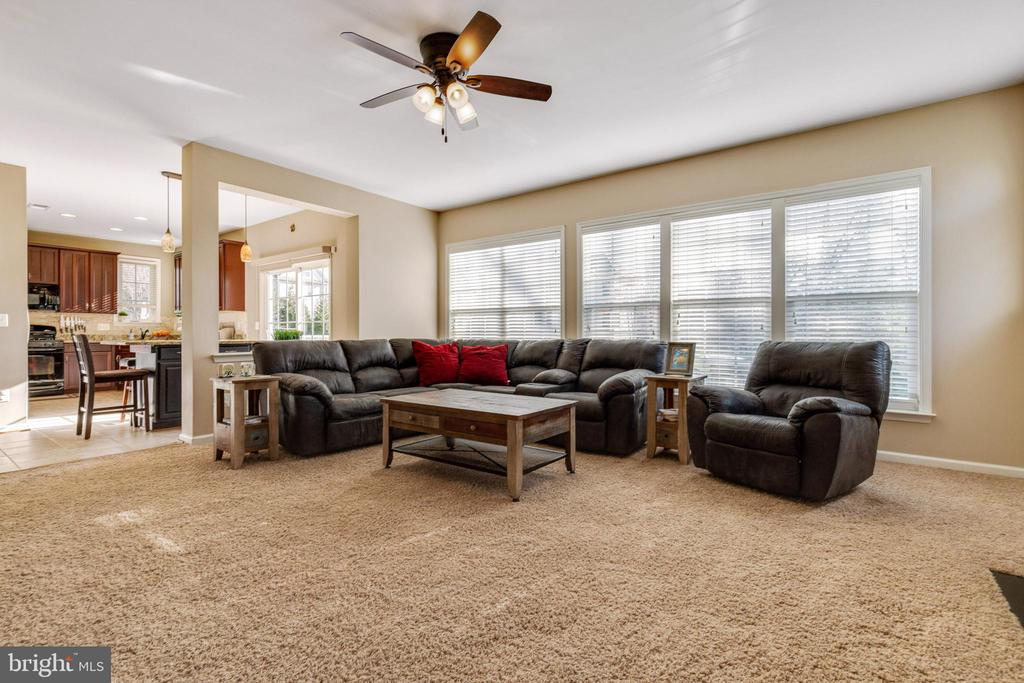 Spacious Family Room - 15659 ALTOMARE TRACE WAY, WOODBRIDGE