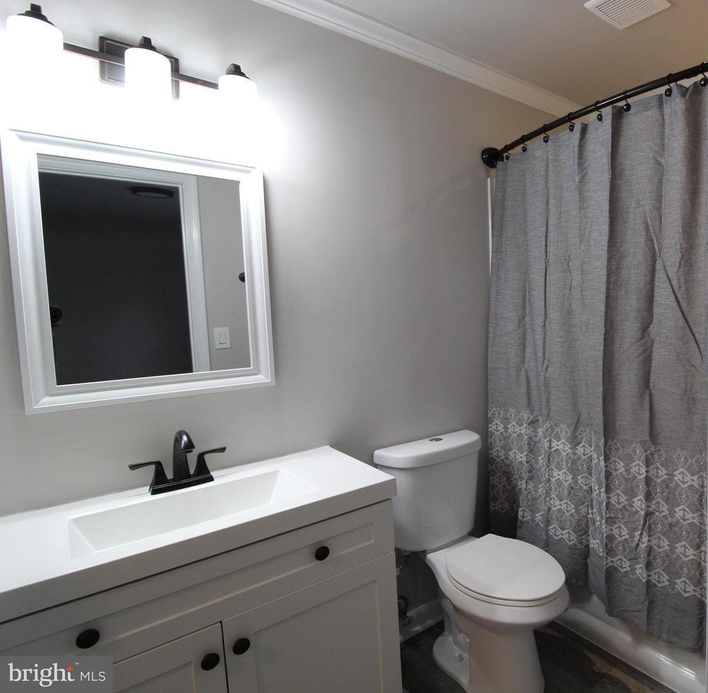 Bathroom - 343 ALBANY ST, FREDERICKSBURG