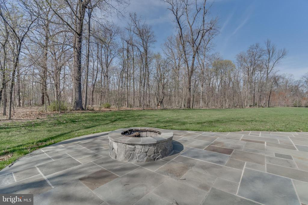 All season firepit - 22441 BEAVERDAM DR, ASHBURN